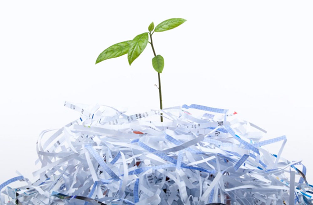 5 Reasons Why You Must Hire Business Document Shredding Services